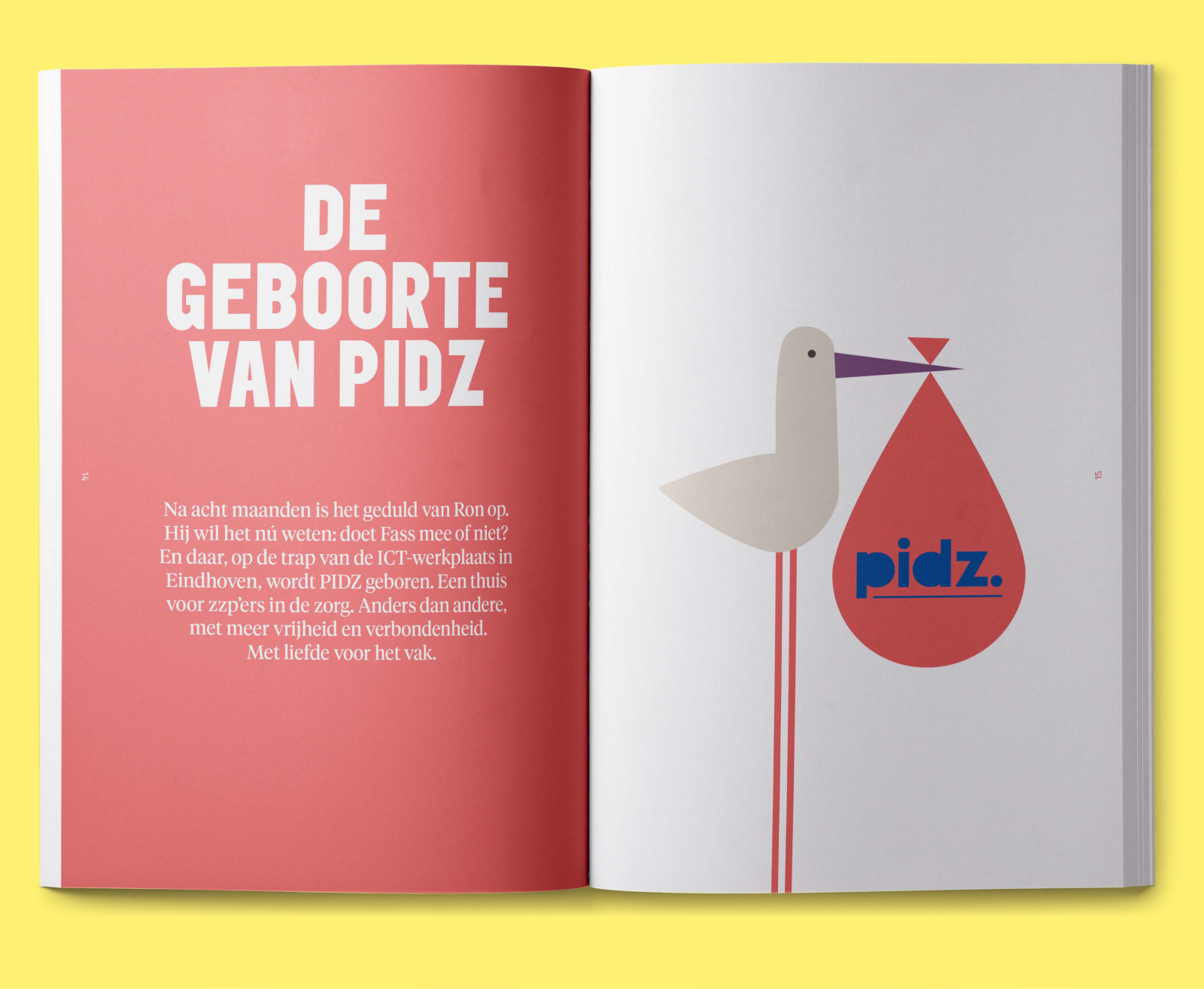 PIDZ-Case-8